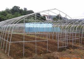 河南温室大棚郑州蔬菜温室建造成本大棚骨架设计加工建设