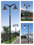 湖南常德3米雙頭別緻庭院燈