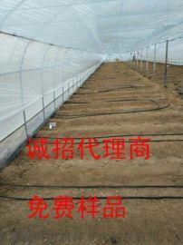 河南安阳供应农业灌溉滴灌专用贴片式滴灌带