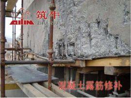 石家庄环氧胶泥桥梁修补筑牛牌ECM环氧树脂胶泥厂家