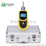KY-2000型泵吸二氧化碳气体分析仪