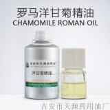 罗马洋甘菊精油 蒸馏提取植物精油