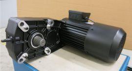 ZFB60/GH5000A/4D112Mb-4法兰泰克诺威ABM变频电机ZFB60制动器刹车片