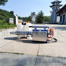 高效喷雾器园林用脉冲动力弥雾机手提式汽油打药弥雾机