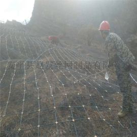菱形主动防护网. 菱形护坡防护网. 菱形主动护坡防护网