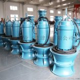 井筒敞開式安裝潛水軸流泵