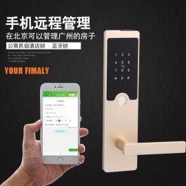 厂家直销智能家用锁把手半导体防盗锁远程手机密码锁智能电子门锁
