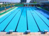 游泳池常用消毒剂,游泳池杀菌消毒剂,游泳池消毒剂 ,氯消毒