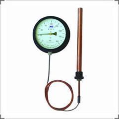 变压器专用WTZ-288系列温度表  温度计