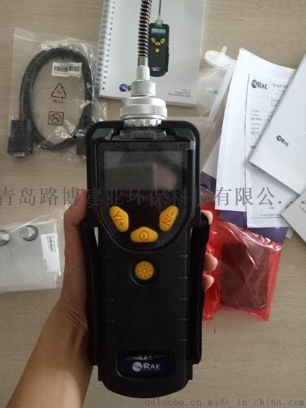 美国华瑞RAE, ppbRAE 3000PGM7340 VOC检测仪