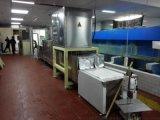 进口冷冻牛肉解冻设备