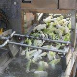 水浴式白菜清洗机 小油菜清洗机 定制白菜清洗生产线