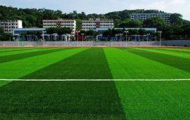 时宽厂家直销人造草坪足球场人工草皮仿真草塑料草假草