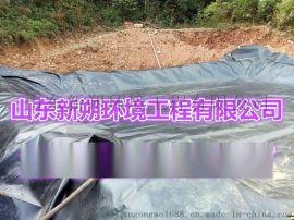 土工膜防渗膜HDPE 土工防渗膜黑膜塑料膜沼气池膜