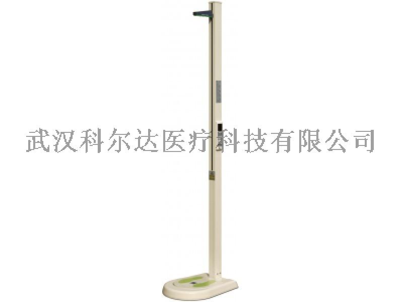 进口DS-103M身高体重测量仪