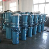高扬程潜水轴流泵生产厂家