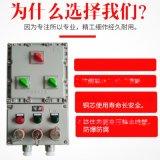 【隆業專供】防爆檢修電源插座箱非標定製