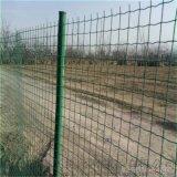綠色養殖圍欄網 果園防護網 林地護欄網