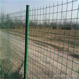 绿色养殖围栏网 果园防护网 林地护栏网