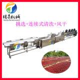 气泡式油菜清洗机 蔬菜挑选清洗风干生产线