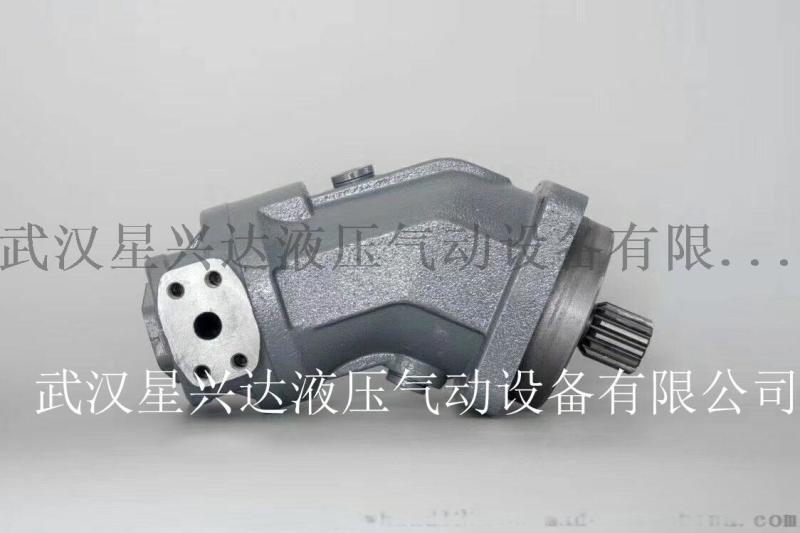 柱塞泵 A2F10L1P1