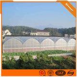 薄膜溫室大棚 拱形薄膜溫室 溫室大棚