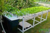 都市农夫全自动灌溉系统无土栽培设备家庭蔬菜水培机加盟代理