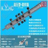 超纯氧化铝水位计DJY1712-115锅炉测量筒水位电极
