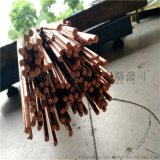 供應大小直徑紫銅棒 高導電紫銅圓棒 紫銅方棒