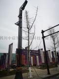 四川景观路灯厂家丶12m大型路灯厂家