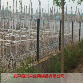 铁丝网护栏网 热镀锌护栏网 艺术围栏网