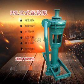 丰球泵业3PNL立式泥浆泵排污泵杂质泵