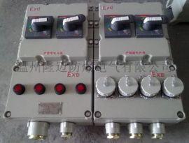 BXK-双电源应急防爆控制箱