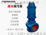 抗堵塞排污泵潜水排污泵污水泵