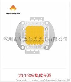 50W COB集成灯珠 普瑞芯片
