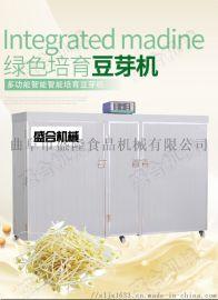 全自动豆芽机报价 多盒大容量豆芽机 商用豆制品设备
