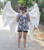 大型天使翅膀