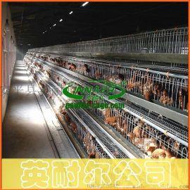 三层四门蛋鸡笼 英耐尔1.88米蛋鸡笼 育雏鸡笼批发