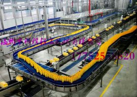 全自动梨(橙子)汁饮料生产线厂家温州科信饮料机械