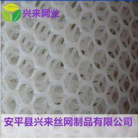 白色养殖网 养殖塑料平网 塑料养殖网