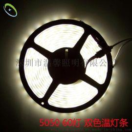 新款LED5050贴片冷暖白防水灯条 单灯双色可调色温灯带12V 高亮