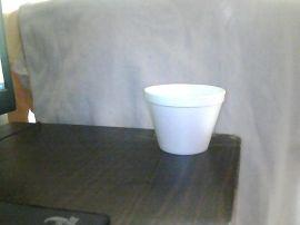 一次性泡沫碗(水松碗)