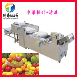 供应水果清洗机青枣清洗生产线 高压喷淋清洗设备