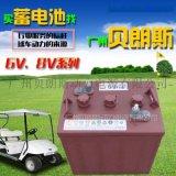 高尔夫球车电池-高尔夫球车电瓶
