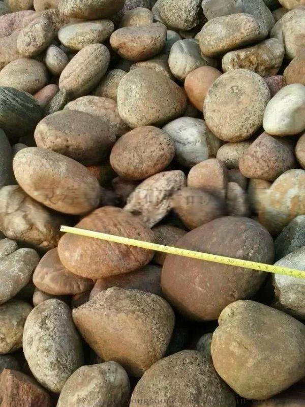 5-8厘米鹅卵石 河北保定永顺5-8厘米鹅卵石报价
