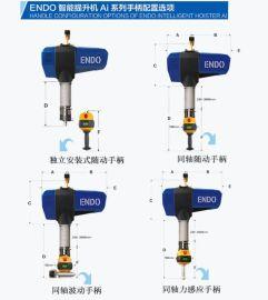 直销ENDO智能提升机 智能提升装置 伺服电动平衡器 智能电动葫芦