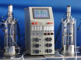 10L两联离位灭菌玻璃发酵罐