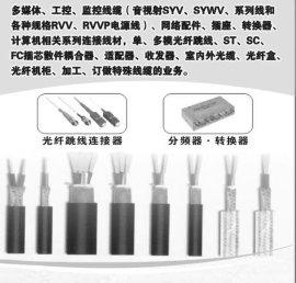 安防监控线缆(HYA5*2*075)