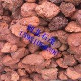 厂家直销火山石  多肉植物铺面火山石 过滤火山石