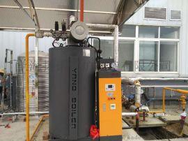 生物制药设备配套用全自动免  低氮燃气蒸汽锅炉,蒸汽发生器——四川某生物制药企业用
